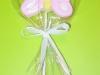 farfalla biscotto lecca lecca