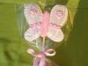 biscotto lecca lecca farfalla