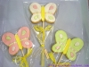 farfalle biscotti lecca lecca